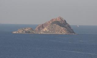 Ile-au-Chiens