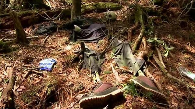 aokigahara-suicide-forest-1413460703427.jpeg